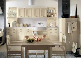 design kitchen cabinet brown color single