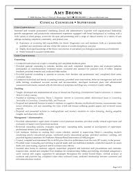 sample counselor resume essay in apa format example after school counselor resume s counselor lewesmr clinical supervisor resume sles sle counselor after school counselor