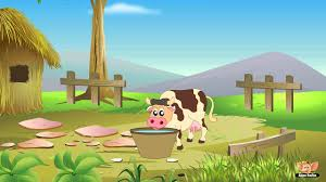 essay my pet animal cow  an essay on cow for kids in english language