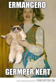 It Had To Happen Once And For All Very Funny Angry Meme+grumpy Cat ... via Relatably.com
