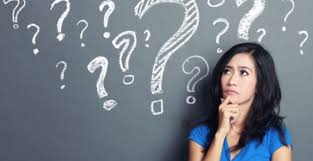 questions to ask a shelter important questions to ask a shelter