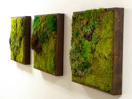 how to make living walls