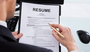 nwa dealpiggy   resume review package or custom resume writing service