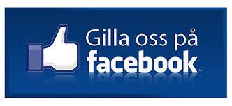 Bildresultat för facebook sök personer