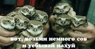 """Минобороны откроет реабилитационный центр для раненых украинских бойцов на базе """"зиц-олигарха"""" Курченко - Цензор.НЕТ 5313"""