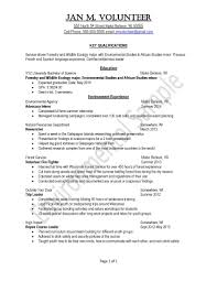resume samples uva career center education peace corps sample resume