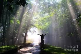 Image result for god's light images