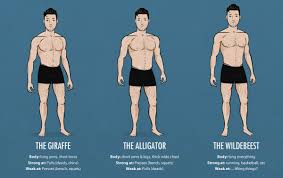 bony to beastly ectomorph weightlifting why skinny guys need to ectomorph body type strengths and weaknesses