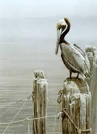 Brown Pelican and Pilings - Bateman, Robert | Живопись ...