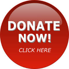 Donate now button in red