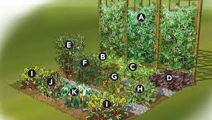 19 Vegetable <b>Garden</b> Plans & Layout Ideas That Will Inspire You ...