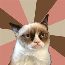 Grumpy Cat Meme Blank - grumpy cat meme generator no related to ... via Relatably.com