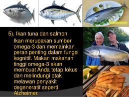 Image result for ikan tuna omega 3