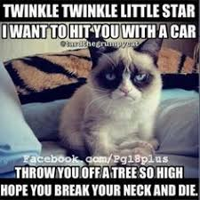 Mad cat on Pinterest | Angry Cat, Grumpy Cat and Cats via Relatably.com