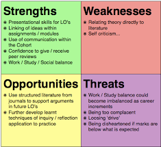 swot analysis toby s ba this