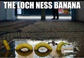 The Loch Ness Monster - www.meme-lol.com | Funny memes | Pinterest ... via Relatably.com