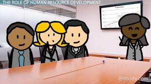 organizational success factors definition video lesson human resource development function role