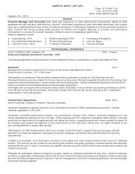 doc 638825 example resume finance resume objective finance skills resume financial analyst resume objective gopitch