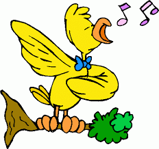 Image result for pics of a bird singing