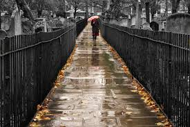 Image result for rain in a graveyard