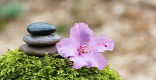 the basics of feng shui and how to apply it to your life apply feng shui
