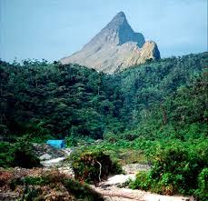 Pico da Neblina National Park