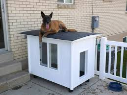 Awesome Dog House DIY Ideas Indoor and Outdoor  PHOTOS the dog mansion