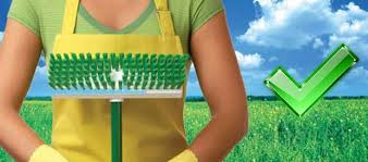 Image result for green janitorial practices
