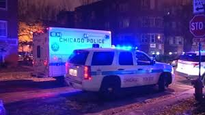 chicago or calls for changes in police training com
