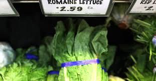 Romaine lettuce E. coli outbreak: it
