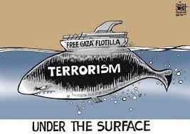 Image result for images gaza flotilla terrorists