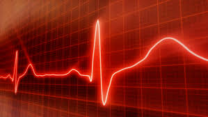 Image result for healthy  real heart