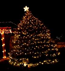 best christmas tree lights photo album home design ideas best christmas tree lights photo album home design ideas big christmas lights photo album