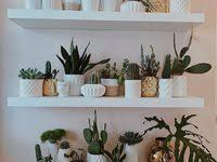 23 Gambar artificial indoor Plants terbaik | Tanaman, Ide, dan Ide ...
