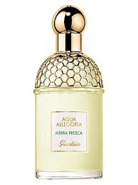 <b>Guerlain</b> - <b>Aqua Allegoria Herba</b> Fresca Eau De Toilette - saks.com
