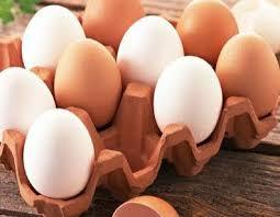 「雞蛋」的圖片搜尋結果