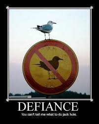 defiance motivational poster bird « LOL with Me .ORG via Relatably.com