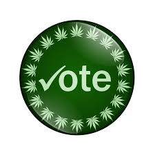 is arizona the next state to legalize recreational marijuana click to enlarge bigstock vote to legalize marijuana but 37010725 jpg