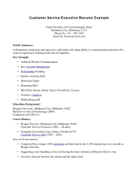 customer service accomplishments resume sample resume pdf customer service accomplishments resume sample resume sample s customer service job objective resume for customer service