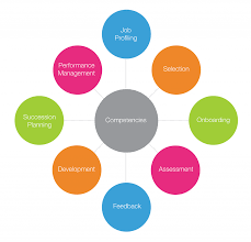 lominger leadership competency model related keywords lominger korn ferry implementation agility consulting
