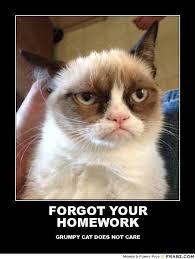 FORGOT YOUR HOMEWORK... - grumpy cat Meme Generator Posterizer | I ... via Relatably.com