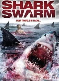 Hàm Cá Mập I Jaws