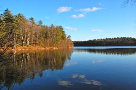 Image result for Picture of Walden Pond and/or Thoreau