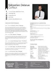 cv sebastien delarue cv englais français pdf fichier pdf cv englais francais pdf