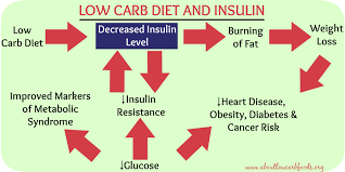 Image result for low carb insulin