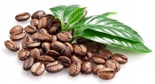 Image result for 'Coffee beans'