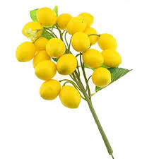 Gresorth Fake Fruit Bunch Decoration Artificial Lemon ... - Amazon.com