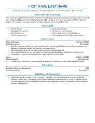 professional 2 resume template experience resume example