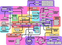wikipedia wikiproject molecular and cell biology metabolic    metabolism wip png