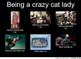 Being a crazy cat lady ... - Meme Generator What i do via Relatably.com